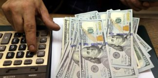 Dollar steady as markets hunker down for Fed rate cut