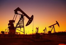 The recent collapse in oil prices could chop $300 million to $600 million off 2020 exploration budgets in Brazil, which has emerged as one of the world's hottest offshore oil plays, specialists at consultancy Wood Mackenzie told Reuters.